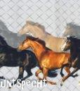 Baumwolljersey Pferdegalopp Paneel-2