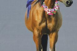 Paneel Jersey - Honululu Horse rauchblau stehend