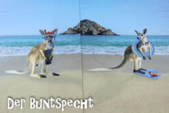 Paneel Jersey - Kangaroos- Übersicht