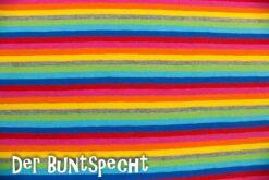 Baumwolljersey Multicolor-2