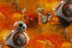Baumwollstoff Star Wars Droide BB8